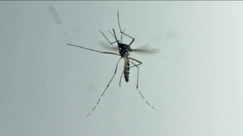 Microsoft Cloud TV Spot, 'Turning Insects Into Field Biologists' - Thumbnail 4