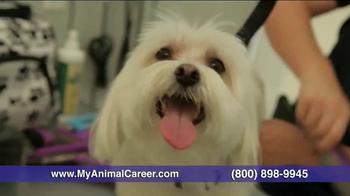 Animal Behavior College TV Spot, 'Your Future' - Thumbnail 9