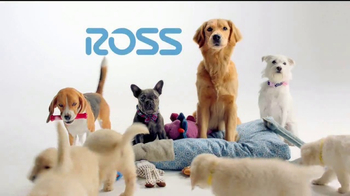 Ross TV Spot, 'If Your Pets Could Talk' - Thumbnail 9