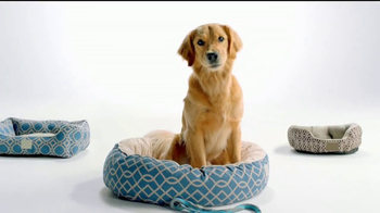 Ross TV Spot, 'If Your Pets Could Talk' - Thumbnail 1