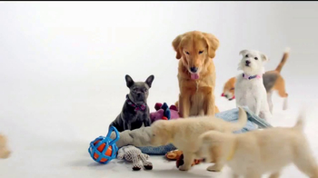 Ross TV Spot, 'If Your Pets Could Talk' - Thumbnail 8