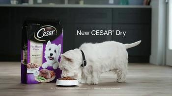 Cesar Dry TV Spot, 'Tastes Like Happy' - Thumbnail 8