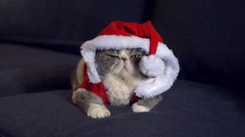 Temptations Cat Treats TV Spot, 'Say Sorry' Song by Elton John - Thumbnail 3