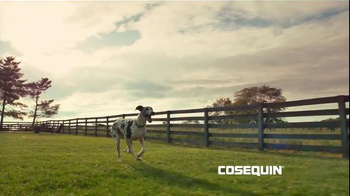 Cosequin TV Spot, 'Happy Thanksgiving' Featuring Jack Hanna - 32 commercial airings
