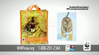 World Wildlife Fund TV Spot, 'Wild Tigers' - Thumbnail 7