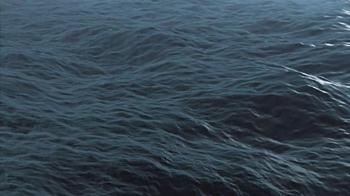 Conservation International TV Spot, 'Harrison Ford Is the Ocean' - Thumbnail 4