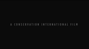 Conservation International TV Spot, 'Liam Neeson Is Ice' - Thumbnail 1