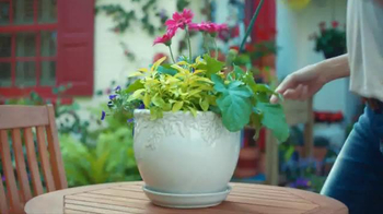 The Home Depot TV Spot, 'Evolving Gardens: Organic Soil' - Thumbnail 4