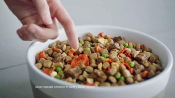 Rachael Ray Nutrish Dish TV Spot, 'This Is a Pea' Featuring Rachael Ray - Thumbnail 3
