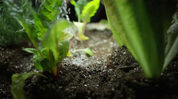 Black Magic TV Spot, 'Growers' - Thumbnail 6