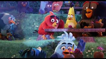 The Angry Birds Movie - Alternate Trailer 11