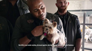Bravecto TV Spot, 'Biker Gang' - Thumbnail 7
