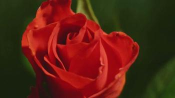 Conservation International TV Spot, 'Lupita Nyong'o is Flower' - Thumbnail 6