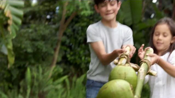 Garnier Whole Blends TV Spot, 'Nueva línea hidratante' [Spanish] - Thumbnail 3