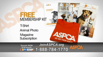 ASPCA TV Spot, 'Rescue Footage' Song by Steven Price - Thumbnail 8