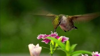 Miracle-Gro TV Spot, 'HGTV: Garden Ideas' - Thumbnail 8