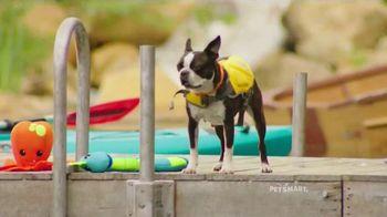 PetSmart TV Spot, 'Summer Adventures' Song by Queen