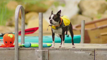 PetSmart TV Spot, 'Summer Adventures' Song by Queen