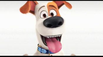 Thunder Shirt TV Spot, 'The Secret Life of Pets' - Thumbnail 10