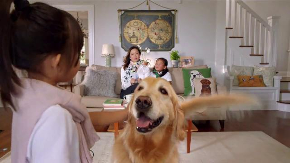 PETCO Grooming TV Commercial, 'Happy'