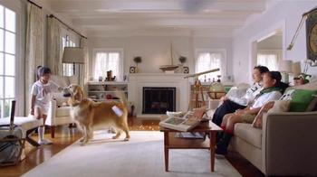 PETCO Grooming TV Spot, 'Happy' - Thumbnail 7