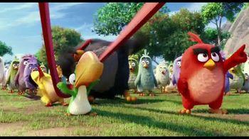 The Angry Birds Movie - Alternate Trailer 51