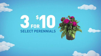 Lowe's Memorial Day Savings TV Spot, 'Paints and Perennials' - Thumbnail 6