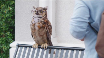 America's Best Contacts and Eyeglasses TV Spot, 'What? When? Why?' - Thumbnail 7