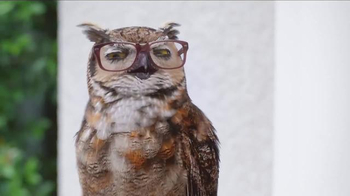 America's Best Contacts and Eyeglasses TV Spot, 'What? When? Why?' - Thumbnail 9