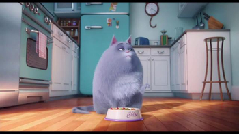 The Secret Life of Pets - Alternate Trailer 6