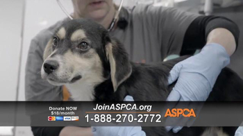 ASPCA TV Spot, 'Deplorable Conditions' - Thumbnail 4