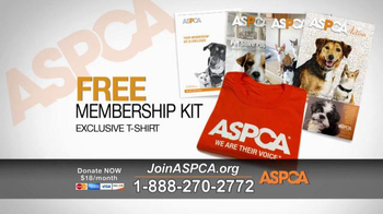 ASPCA TV Spot, 'Deplorable Conditions' - Thumbnail 5
