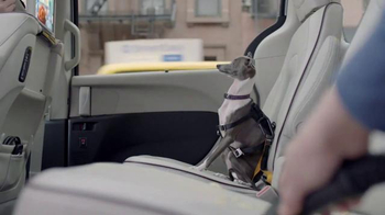2017 Chrysler Pacifica TV Spot, 'Dog Treat' Featuring Seth Meyers - Thumbnail 3