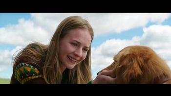 A Dog's Purpose - Alternate Trailer 7