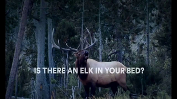 Sleep Number TV Spot, 'Elk in Your Bed: i8 Mattress' - Thumbnail 3