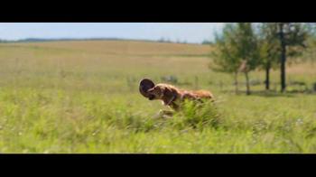A Dog's Purpose - Alternate Trailer 11