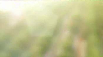 Florida's Natural TV Spot, 'Food Network: Groves' Feat. Damaris Phillips - Thumbnail 2