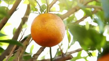 Florida's Natural TV Spot, 'Food Network: Groves' Feat. Damaris Phillips - Thumbnail 6