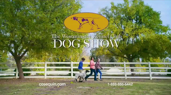 Cosequin TV Spot, 'Westminster Champion' - Thumbnail 9