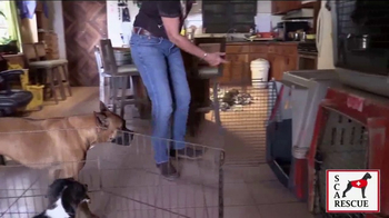 Second Chance Animal Rescue TV Spot, 'Hope & Heroes' - Thumbnail 7