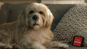 T-Mobile TV Spot, 'Dog Years: December' - Thumbnail 2
