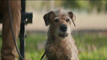 T-Mobile TV Spot, 'Dog Years: December' - Thumbnail 4