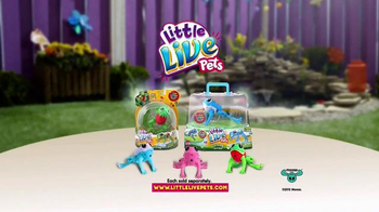 Little Live Pets Lil' Frog TV Spot, 'Dive on In' - Thumbnail 5