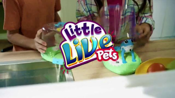 Little Live Pets Lil' Frog TV Spot, 'Dive on In' - Thumbnail 1