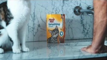 Meow Mix Brushing Bites TV Spot, 'Brushing Teeth' - Thumbnail 5