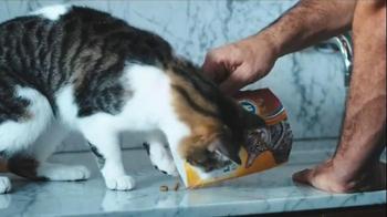 Meow Mix Brushing Bites TV Spot, 'Brushing Teeth' - Thumbnail 6