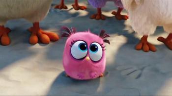 XFINITY On Demand TV Spot, 'The Angry Birds Movie' - Thumbnail 5