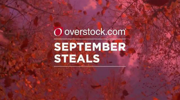 Overstock.com September Steals TV Spot, 'Prices are Falling' - Thumbnail 1