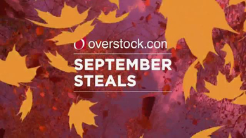 Overstock.com September Steals TV Spot, 'Prices are Falling' - Thumbnail 2