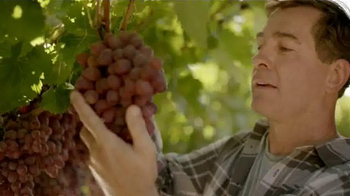 Grapes From California TV Spot, 'Food Network: Family Dinner' - Thumbnail 1